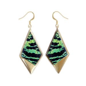 Green butterfly wing drop kite pendant earrings - Green Sunset Moth