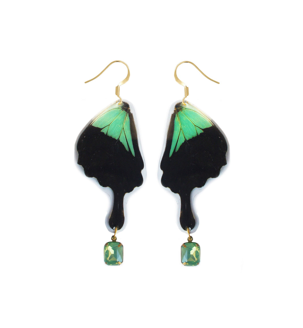 Real Butterfly Wing Charm Earrings - Papilio Phorcas