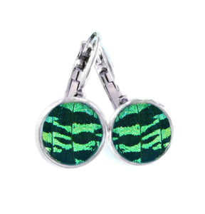 Real Butterfly Wing Post Earrings - Green Sunset Moth