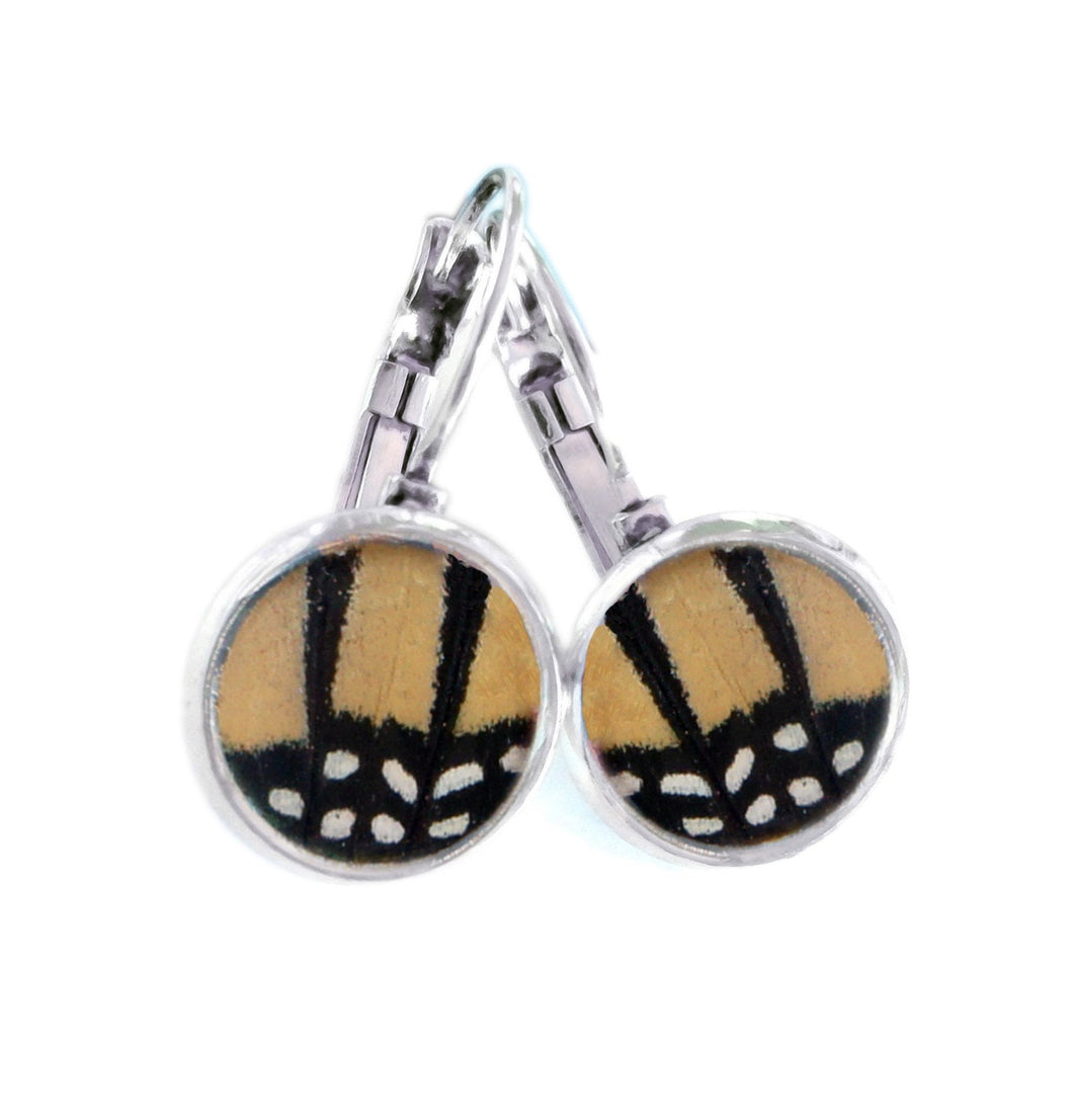 Real Butterfly Wing Post Earrings - Monarch with polka dots