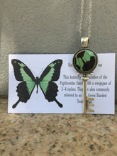 Load image into Gallery viewer, Real Butterfly Wing Skeleton Key Necklace Pendant - Papilio Phorcas