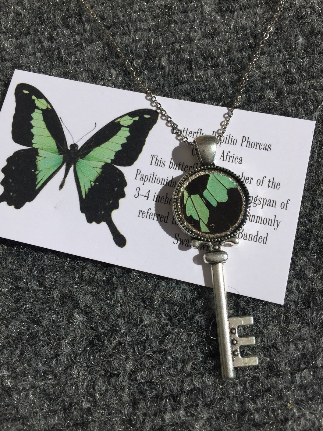Real Butterfly Wing Skeleton Key Necklace Pendant - Papilio Phorcas