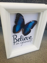 Load image into Gallery viewer, 5x7 Real Framed Butterfly Taxidermy - Morpho Peoeides