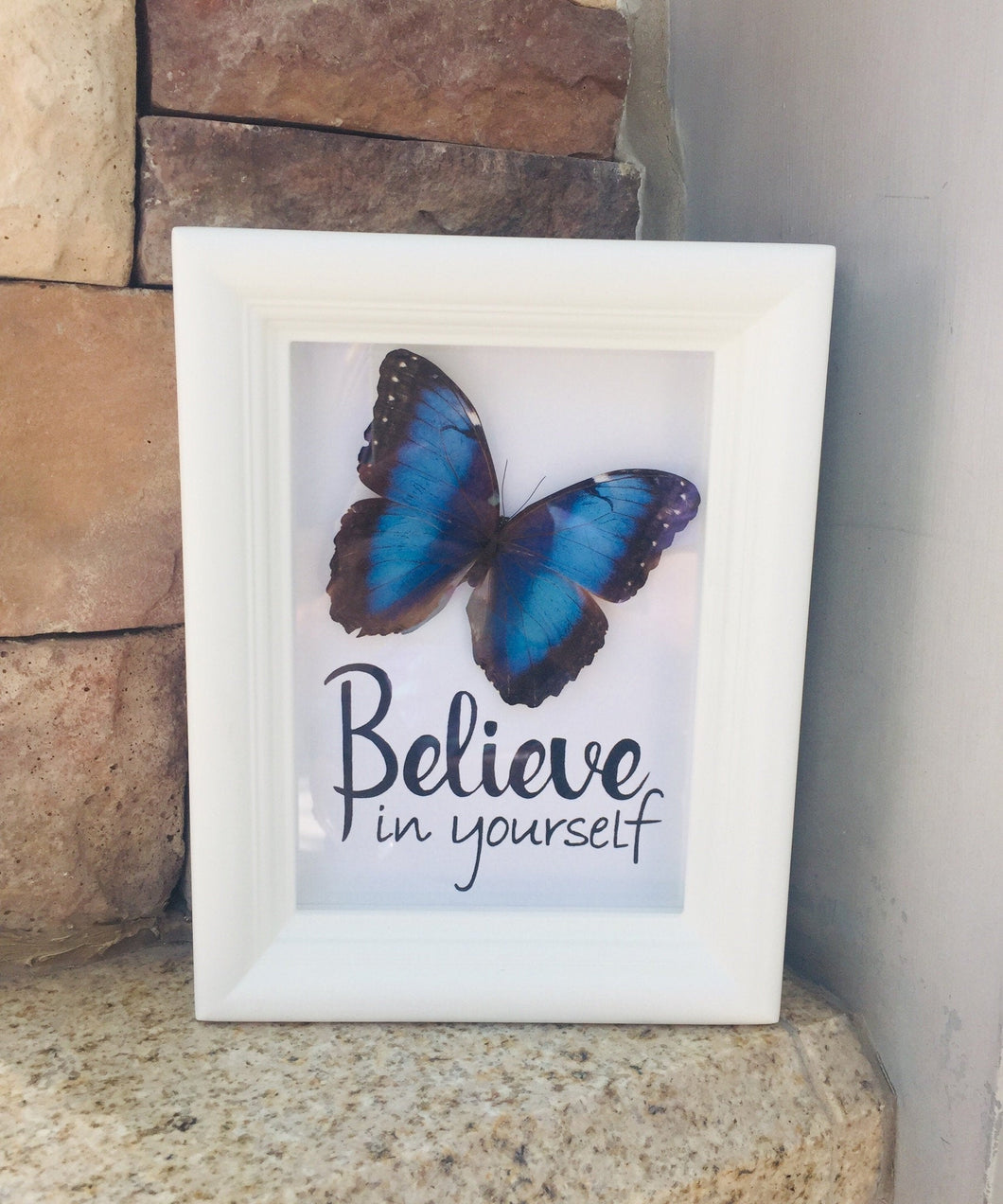 5x7 Real Framed Butterfly Taxidermy - Morpho Peoeides