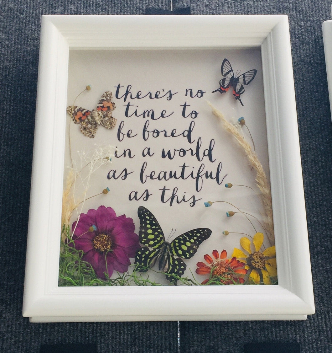 8x10 Real Butterflies With Quote - No Time To Be Bored
