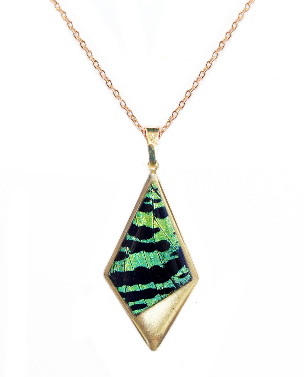 Real Butterfly Wing Kite Pendant Necklace - Green Sunset Moth Forewing