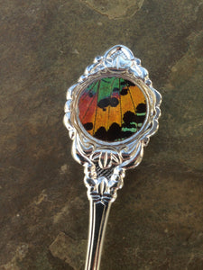 Decorative Spoon Collection with Real Rainbow Sunset Moth Wing