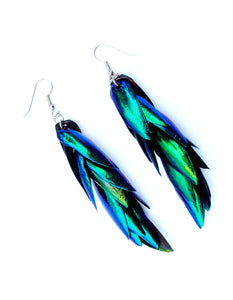"Real Beetle Wing Earrings - (3.5"" long - medium size)"