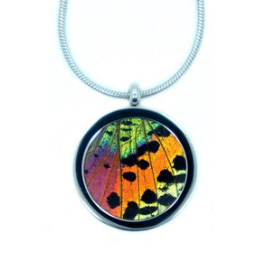 Real Butterfly Pendant Necklace - Rainbow Sunset Moth