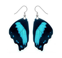 Load image into Gallery viewer, Real Butterfly Wing Earrings - Papilio Bromius