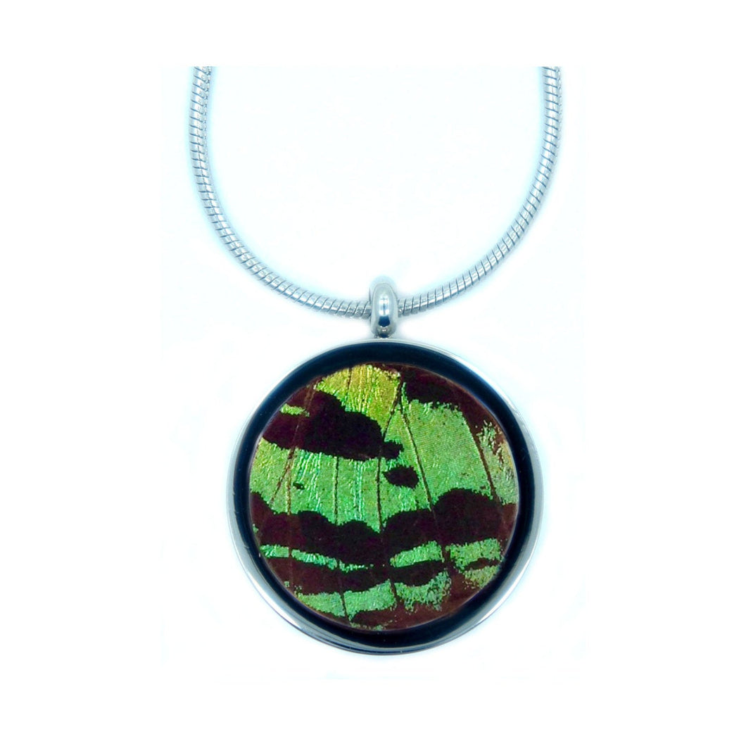 Real Butterfly Necklace Pendant - Green Sunset Moth