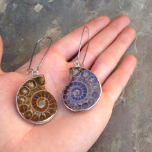 Load image into Gallery viewer, Real Ammonite Shell Drop Earrings