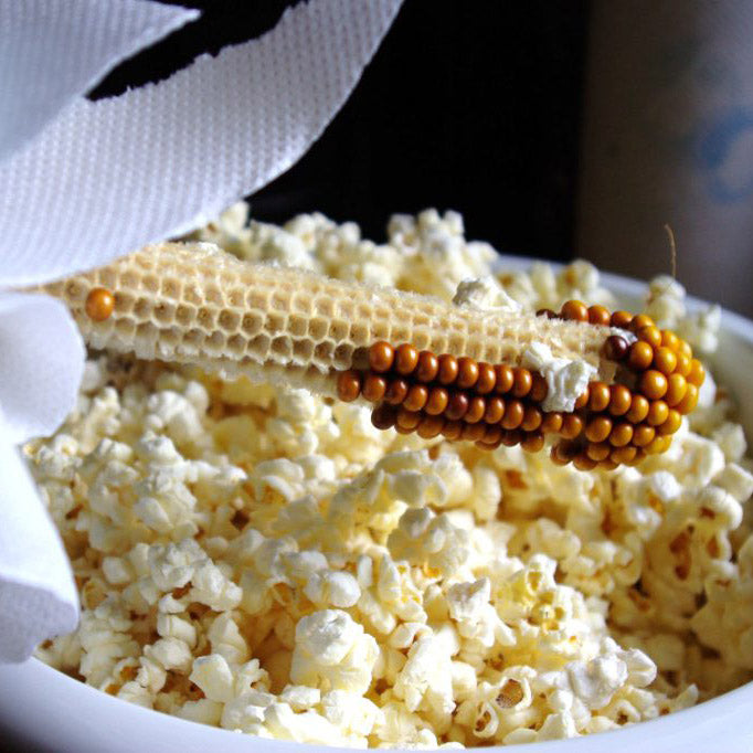 Pop off the Cob - Uncle Bobs Popcorn