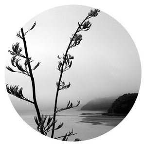 Art Spots- Black and White Images from $24