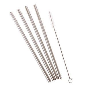 Metal Straws - set of Four + Brush