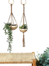Plant Hanger - Seta (Set of 2)
