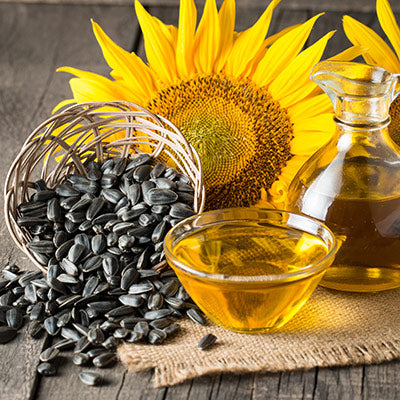 Sunflower Seed Oil Icon