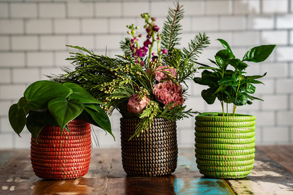 Vibrant Basket Planters- Red, Black and Green Available