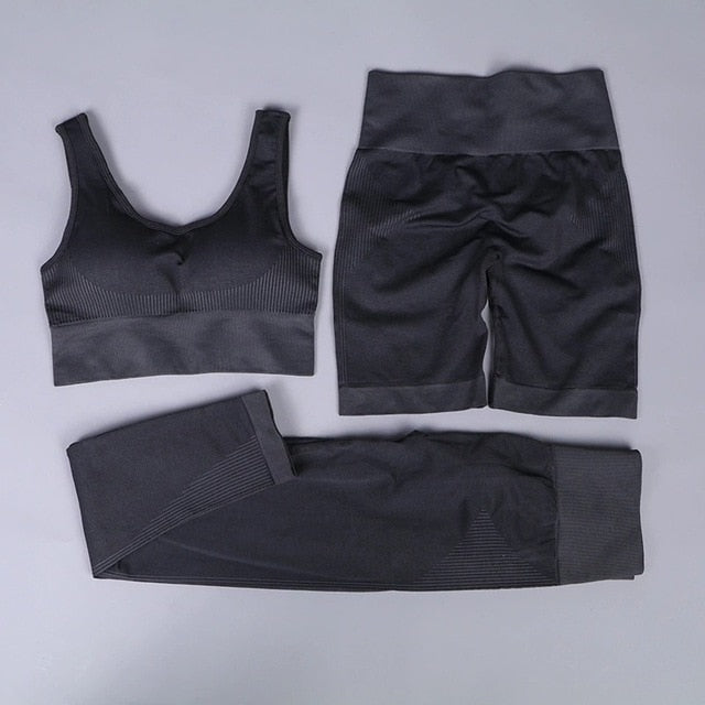 Three Piece Gym Women Sportswear Seamless Fitness Suit