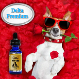Delta Premium CBD 120mg Pet Oil