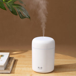 Portable Humidifier Cool Mist Maker Air Humidifier Purifier with Romantic Light - Popular Gadget Fun