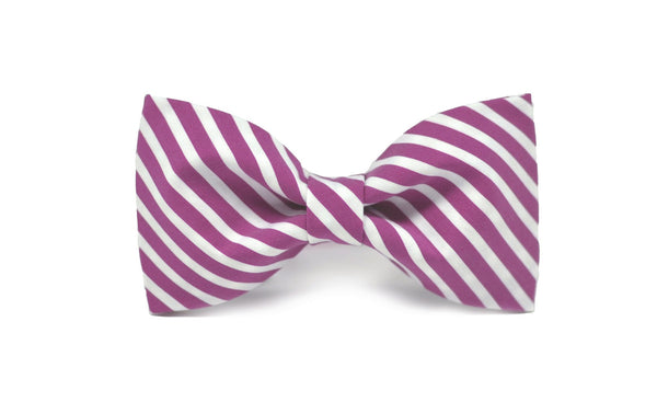Mauve Stripe Bow Tie - Mule Ties