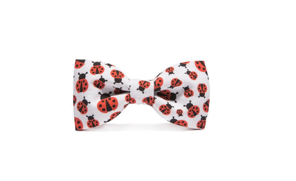 08 Lady Bug Bow Tie - Mule Ties