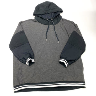 Primary Photo - BRAND:   CMC STYLE: SWEATSHIRT HOODIE COLOR: GREY SIZE: 1X OTHER INFO: TE VERDE - SKU: 180-18038-105487