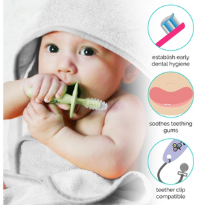Zoli- Chubby Gummy- Gum Massaging Teethers