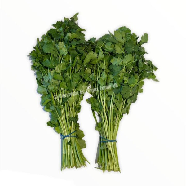 Coriander (2 Bunches) - Zingox Foods UK