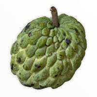 Custard Apple 450-500g - Zingox Foods UK