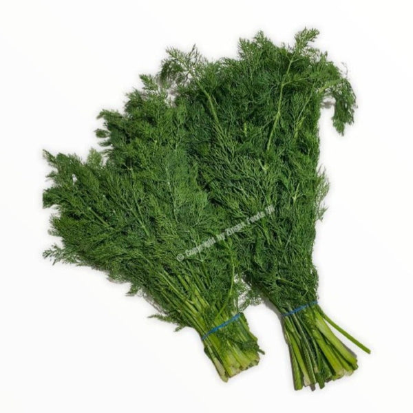 Dill Leaves/Shepu (2 Bunches) - Zingox Foods UK