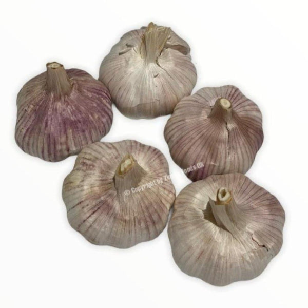 Garlic - Zingox Foods UK
