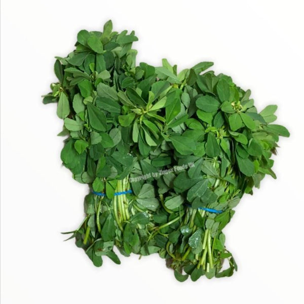 Methi (2 Bunches) - Zingox Foods UK