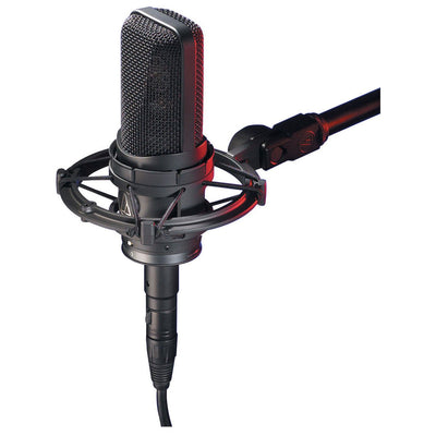 Condenser Microphones - Audio-Technica AT4050 - Large Diaphragm Multi-pattern Condenser Microphone