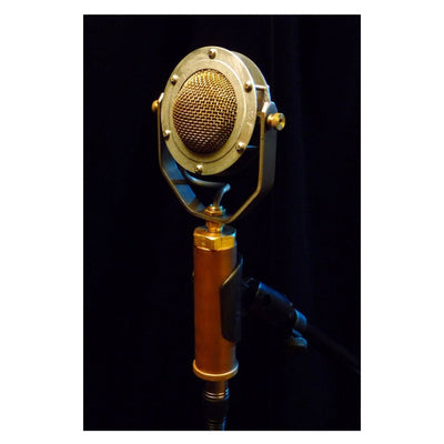 Condenser Microphones - Ear Trumpet Labs Edwina Condenser Microphone