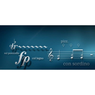 Software Bundles - Vienna Symphonic Library VSL - SPECIAL EDITION VOL. 2 PLUS