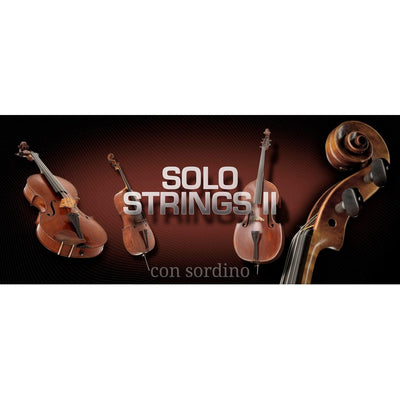 Software Instruments - Vienna Symphonic Library VSL - SOLO STRINGS II