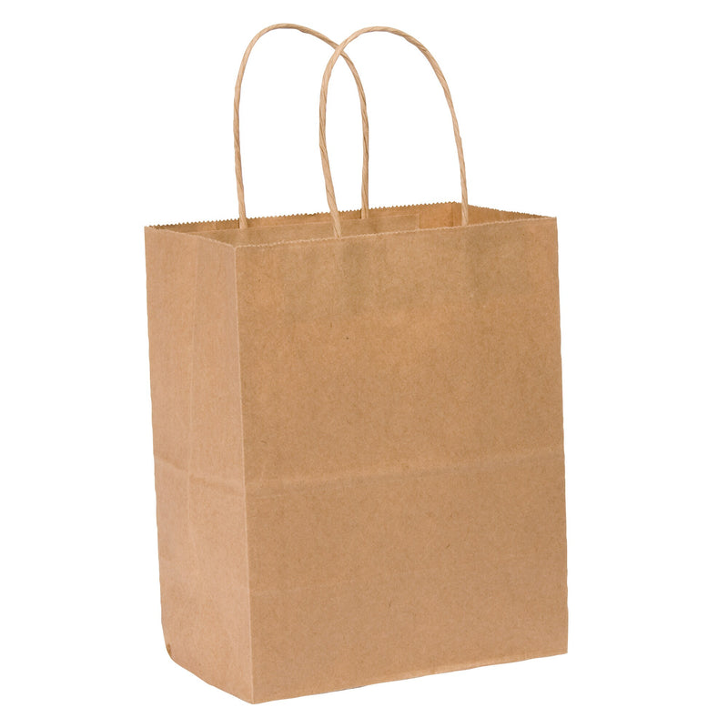 De Luxe Tempo Kraft Brown Paper Bags;Pack of 250