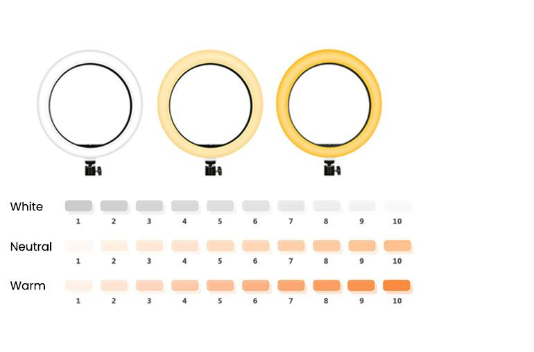 ringlightus 10 inch ring light with 3 modes of lighting