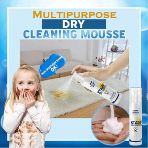 Multipurpose Dry Cleaning Mousse