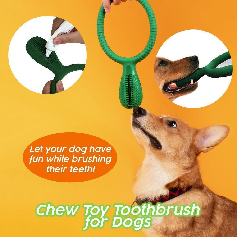 Chew Toy Toothbrush for Dogs