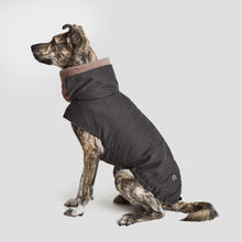 Load image into Gallery viewer, Dog Coat Brooklyn Graphite