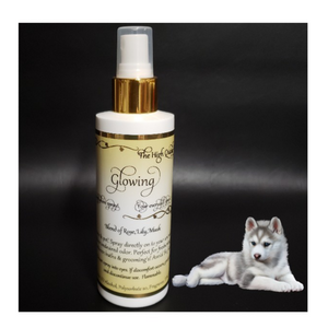 Glowing Fragrance Perfume for Dogs