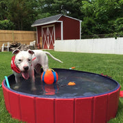 Tilly™ - Portable Paw Pool