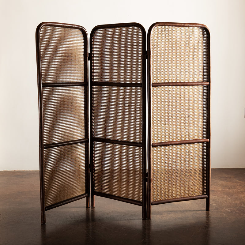 French Wood and Cane Room Divider, 1950s