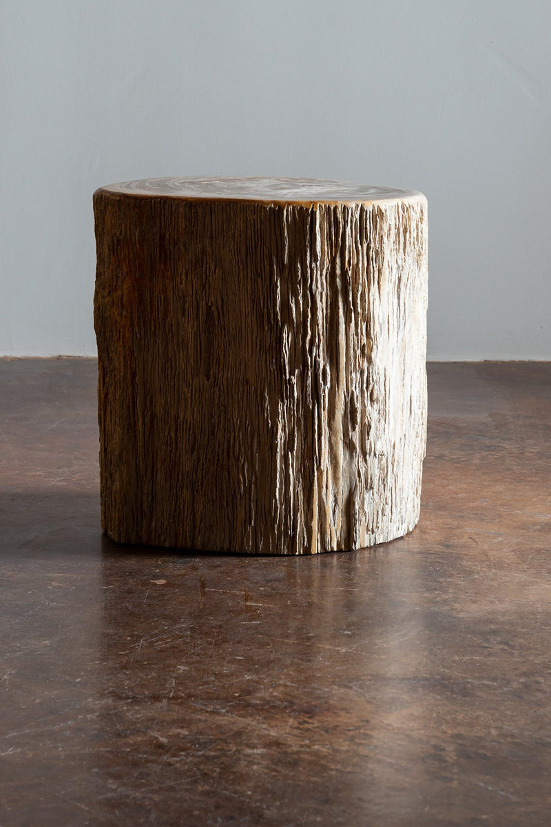 Primitive Petrified Wood Stump Form Side Table