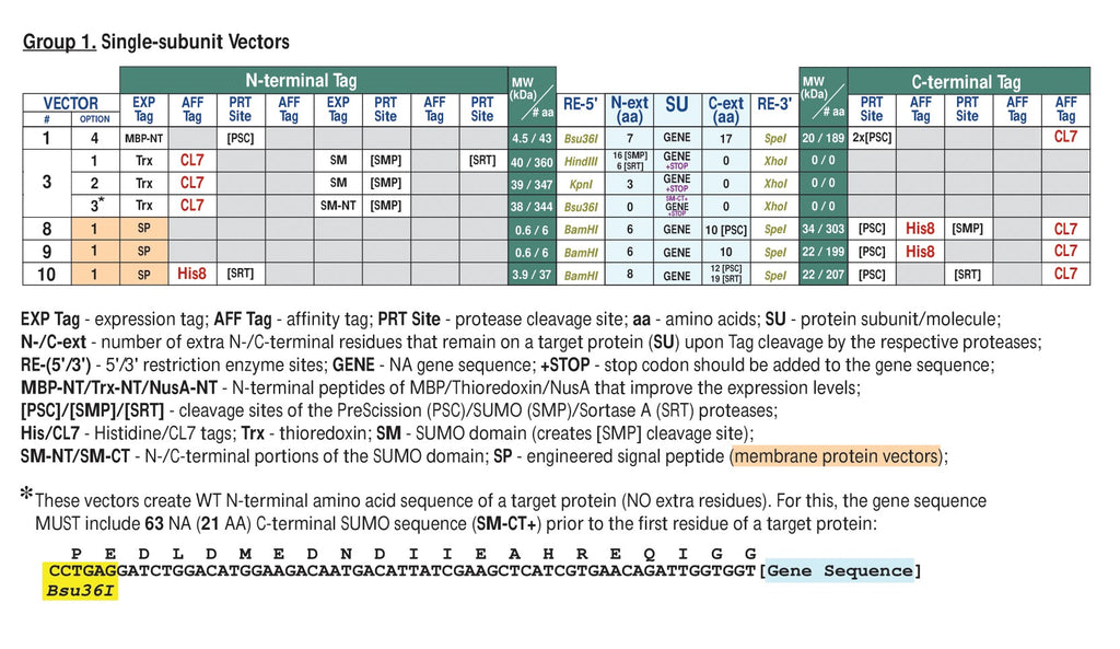 single subunit and membrane protein vectors