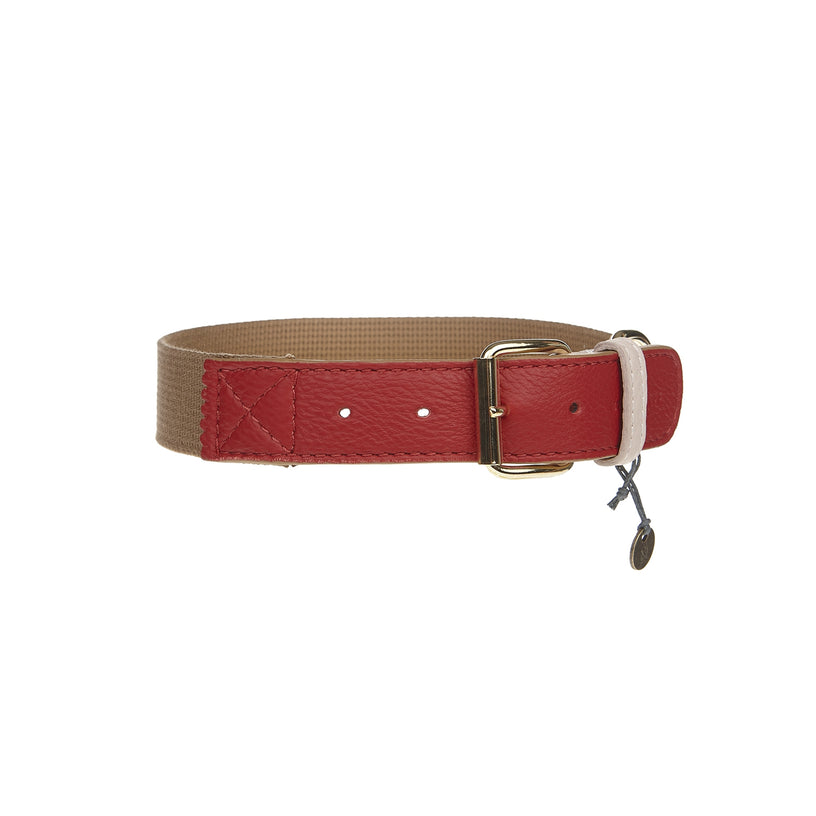 Amalfi Dog Collar