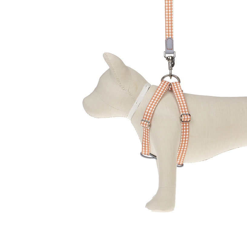 Ring Dog Harness Clara Check